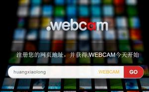 webcam0